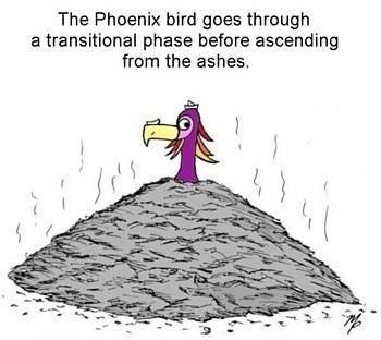ash bird - February 12, 2015s